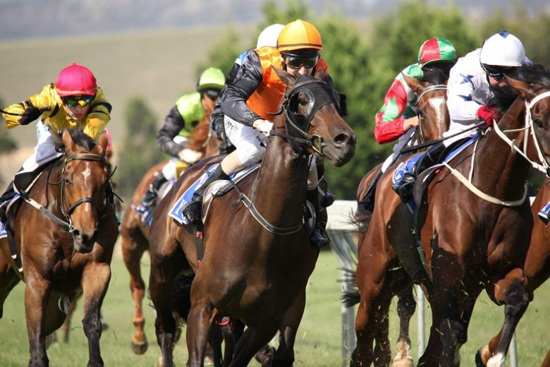 How to bet on Horse Races for Beginners